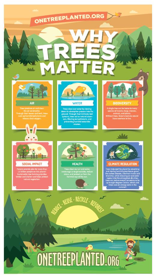 6 pillars of why trees matter